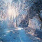 WinterIcon